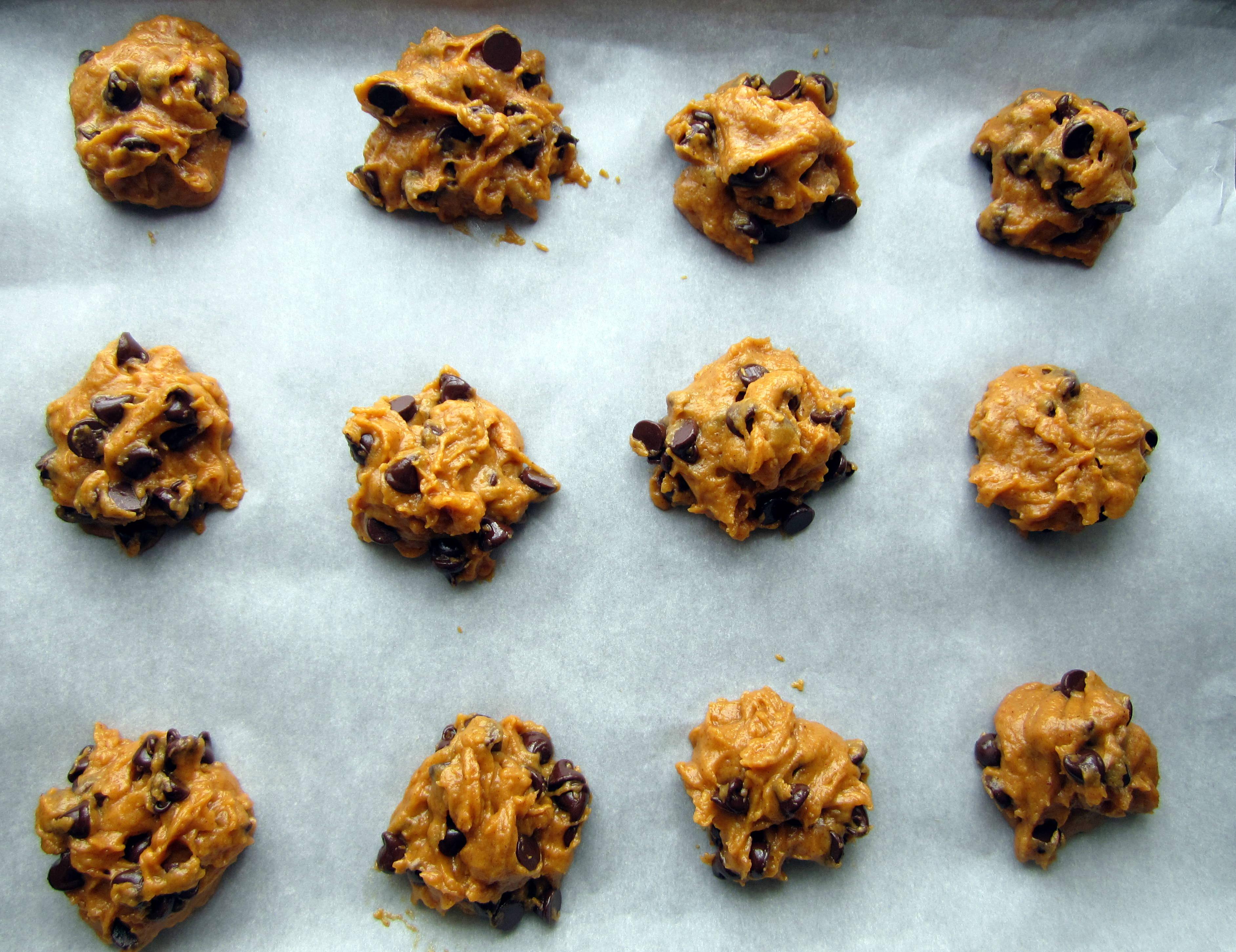 Pumpkin Chocolate Chip Cookies   Ellen in the Kitchen