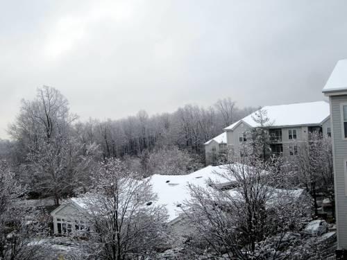 snowdayz